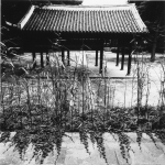 Korean traditional architecture & environment